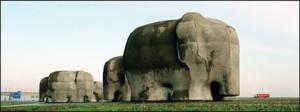 004_olifanten001