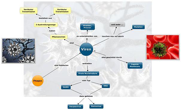 Viren-für-blog_konzpet-maps_Klein2